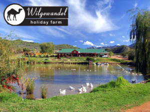 Wilgewandel Holiday Farm Activities